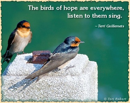 Birds-of-Hope