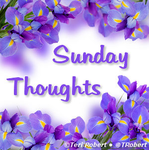 Sunday-Thoughts-Violets