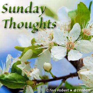 SundayThoughts